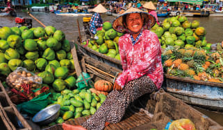 Vietnamese woman selling fruits on floating market