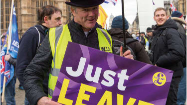 UKIP protester © George Cracknell Wright /Alamy Live News