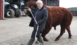 Boris Johnson and a load of bull