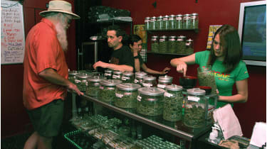 Medicinal cannabis is the most promising segment of the market