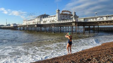 Swimmer on Brighton Beach © Simon Dack / Alamy