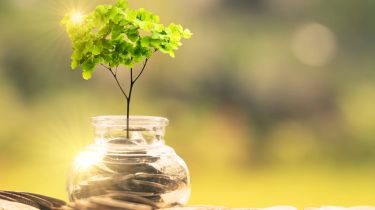 Sustainable investing concept with tree and money pot